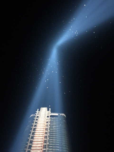 Birds 'trapped' in the Tribute in Light Memorial's Beams