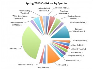 PSF spring migration bird collisions chart